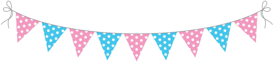 Pink and Blue Bunting Flag Banner PNG.png.opt1010x234o0,0s1010x234